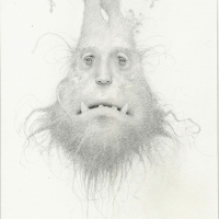 The Root Beard, drawing