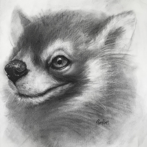 BENTLEY, GRAPHITE ON PAPER, 18 X 15 IN, 2016