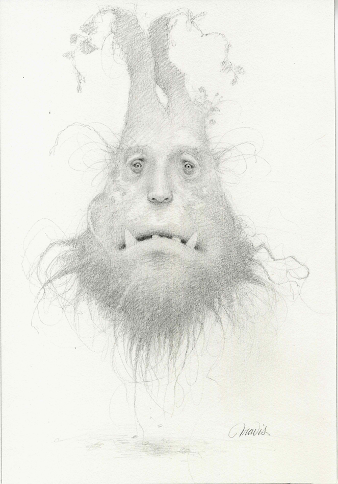 THE ROOT BEARD, DRAWING GRAPHITE ON PAPER, 13 X 9 INCHES