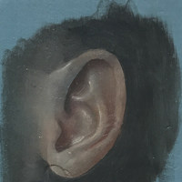 TH_Ear study (blue)