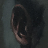 TH_Ear study (grey)